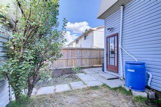 Photo 30: 3020 Dover Crescent SE in Calgary: Dover Semi Detached for sale : MLS®# A1147762