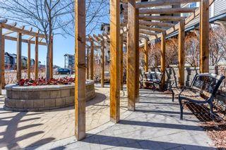 Photo 11: 4213 115 Prestwick Villas SE in Calgary: McKenzie Towne Apartment for sale : MLS®# A1143848