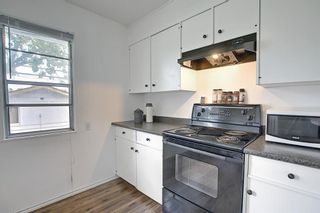 Photo 9: 1228 19 Street NE in Calgary: Mayland Heights Detached for sale : MLS®# A1118594