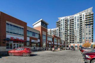 Photo 19: 1201 8710 Horton Road SW in Calgary: Haysboro Apartment for sale : MLS®# A1152139