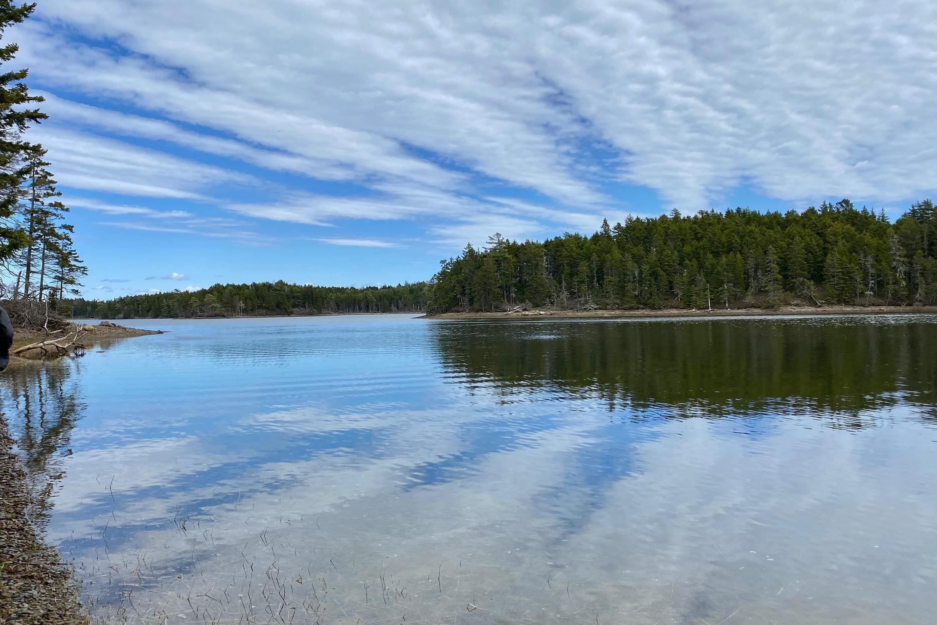 Main Photo: Indian Path Road in Indian Path: 405-Lunenburg County Vacant Land for sale (South Shore)  : MLS®# 202111377