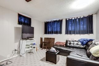 Photo 17: 7135 8 Street NW in Calgary: Huntington Hills Detached for sale : MLS®# A1093128