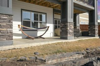 Photo 47: 59 Marquis Cove SE in Calgary: Mahogany Detached for sale : MLS®# A1087971