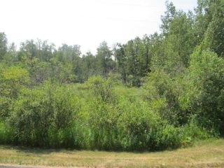 Photo 1: 398 52152 RR 210: Rural Strathcona County Rural Land/Vacant Lot for sale : MLS®# E4254227