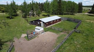 Photo 16: 51060 RGE RD 33: Rural Leduc County House for sale : MLS®# E4247017