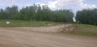 Photo 1: 47411 RR 31: Rural Leduc County Rural Land/Vacant Lot for sale : MLS®# E4246478