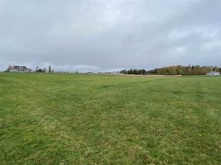 Photo 5: Lot 14 Salty Reef Road in Braeshore: 108-Rural Pictou County Vacant Land for sale (Northern Region)  : MLS®# 202021992