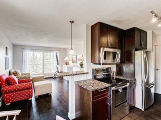 Photo 13: 412A 4455 Greenview Drive NE in Calgary: Greenview Apartment for sale : MLS®# A1101294