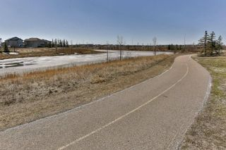 Photo 31: 49 SADDLECREST Place NE in Calgary: Saddle Ridge House for sale : MLS®# C4179394