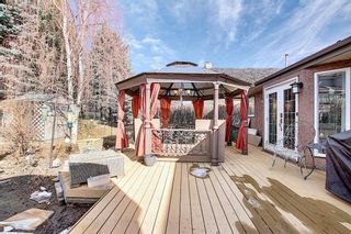 Photo 41: 318 Hawkside Mews NW in Calgary: Hawkwood Detached for sale : MLS®# A1082568