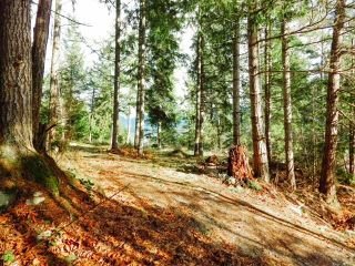 Photo 7: 6151 HARBOUR Way in Sechelt: Sechelt District Land for sale (Sunshine Coast)  : MLS®# R2530969