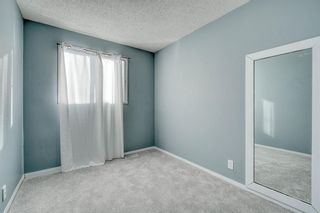 Photo 26: 375 Falshire Way NE in Calgary: Falconridge Detached for sale : MLS®# A1089444