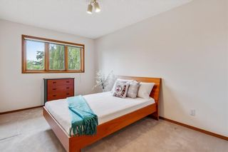 Photo 26: 709 EDGEBANK Place NW in Calgary: Edgemont Detached for sale : MLS®# C4259553