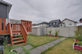 Photo 5: 139 Saddlehorn Close NE in Calgary: Saddle Ridge Detached for sale : MLS®# A1140140