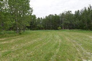 Photo 15: Halland Acreage in Torch River: Residential for sale (Torch River Rm No. 488)  : MLS®# SK832094