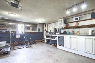 Photo 36: 347 EVANSTON View NW in Calgary: Evanston Detached for sale : MLS®# A1023112