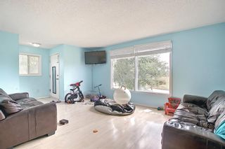 Photo 8: 51 Erin Park Close SE in Calgary: Erin Woods Detached for sale : MLS®# A1138830