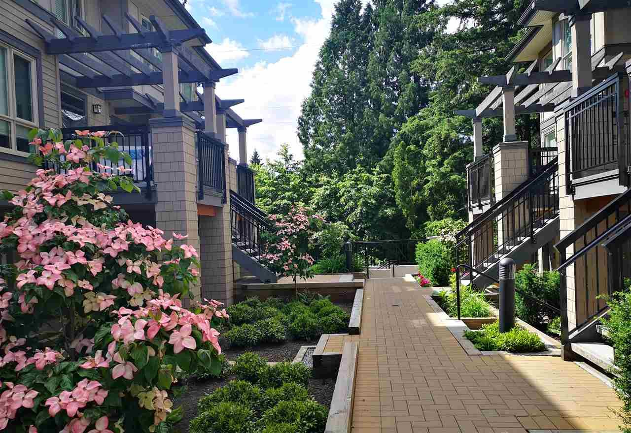 Main Photo: 2 3201 NOEL DRIVE in Burnaby: Sullivan Heights Townhouse for sale (Burnaby North)  : MLS®# R2393587