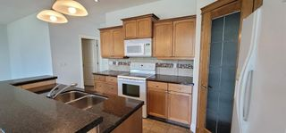 Photo 10: 250 CANAL Circle SW: Airdrie Detached for sale : MLS®# A1127167