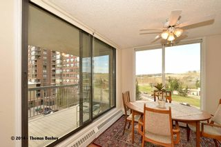 Photo 17: 602 145 Point Drive NW in CALGARY: Point McKay Condo for sale (Calgary)  : MLS®# C3612958