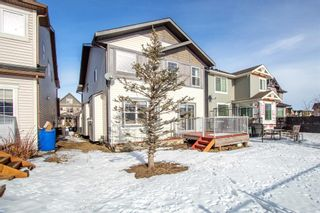 Photo 1: 12 Skyview Springs Crescent NE in Calgary: Skyview Ranch Detached for sale : MLS®# A1067284