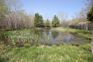 Photo 5: 169 Walkerville Road in Priestville: 108-Rural Pictou County Residential for sale (Northern Region)  : MLS®# 202114968