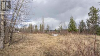 Photo 11: 2455 PARENT ROAD in Prince George: Vacant Land for sale : MLS®# R2548505