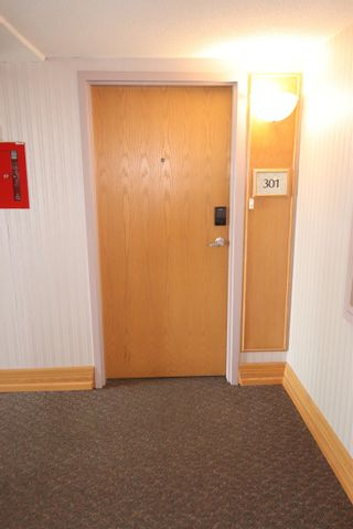 Photo 20: 301 12319 JASPER Avenue in Edmonton: Zone 12 Condo for sale : MLS®# E4263836