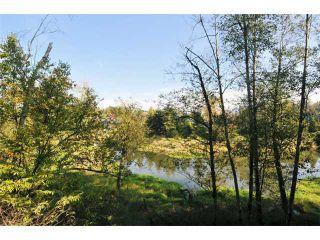 "Photo 15: 2 23281 KANAKA Way in Maple Ridge: Cottonwood MR Townhouse for sale in ""WOODRIDGE"" : MLS®# V1032160"