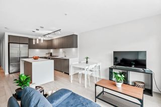Photo 6: 201 5555 DUNBAR STREET in Vancouver: Dunbar Condo for sale (Vancouver West)  : MLS®# R2590061