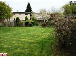 Photo 10: 31840 JERVIS Court in Abbotsford: Abbotsford West House for sale : MLS®# F1010654