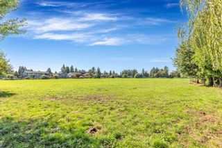 "Photo 9: 12591 209 Street in Maple Ridge: Northwest Maple Ridge Agri-Business for sale in ""HAMPTON FARMS"" : MLS®# C8040444"