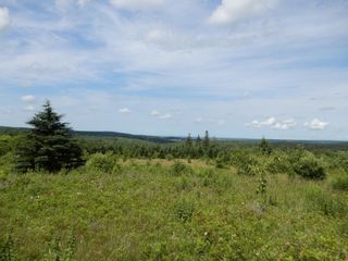 Photo 22: 299 New Lairg Road in New Lairg: 108-Rural Pictou County Vacant Land for sale (Northern Region)  : MLS®# 202117815