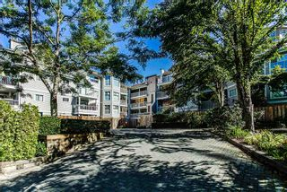 "Photo 1: 103 2678 DIXON Street in Port Coquitlam: Central Pt Coquitlam Condo for sale in ""SPRINGDALE"" : MLS®# R2202418"