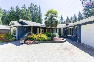 Photo 35: 3832 PRINCESS Avenue in North Vancouver: Princess Park House for sale : MLS®# R2484113