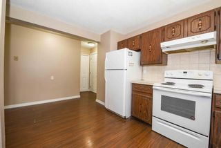 Photo 19: 40 Whitefield Crescent NE in Calgary: Whitehorn Detached for sale : MLS®# A1139313