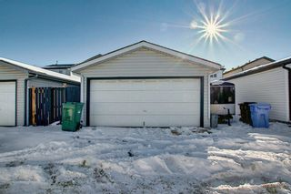 Photo 25: 70 Martinbrook Link NE in Calgary: Martindale Residential for sale : MLS®# A1071683