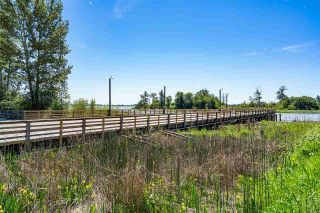 """Photo 35: 201 6160 LONDON Road in Richmond: Steveston South Condo for sale in """"THE PIER AT LONDON LANDING"""" : MLS®# R2590843"""