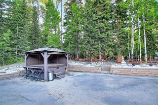 Photo 49: 9 MOUNTAIN LION Place: Bragg Creek Detached for sale : MLS®# A1032262