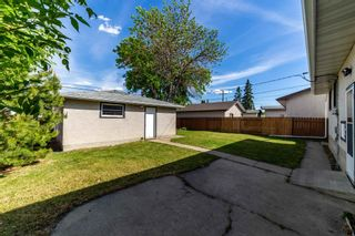 Photo 36: 13323 Delwood Road in Edmonton: Zone 02 House for sale : MLS®# E4247679