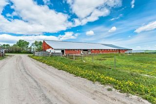 Photo 5: 386091 112 Street: Rural Foothills County Detached for sale : MLS®# C4301628