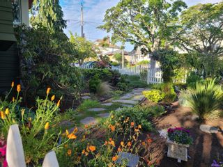 Photo 32: 93 LINDEN Ave in : Vi Fairfield West House for sale (Victoria)  : MLS®# 877428