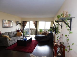 Photo 6: 216 964 Heywood Ave in : Vi Fairfield West Condo for sale (Victoria)  : MLS®# 856887