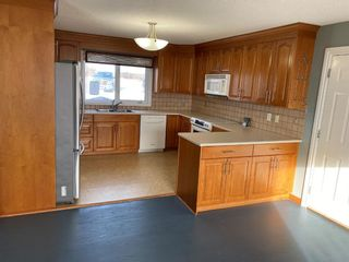 Photo 3: 162 Eagle Lake Place: Rural Wheatland County Detached for sale : MLS®# A1059399