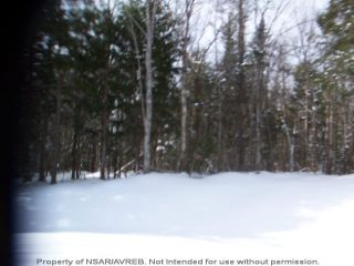 Photo 4: Lot 10-10 ELSHIRL Road in Plymouth: 108-Rural Pictou County Vacant Land for sale (Northern Region)  : MLS®# 202112056