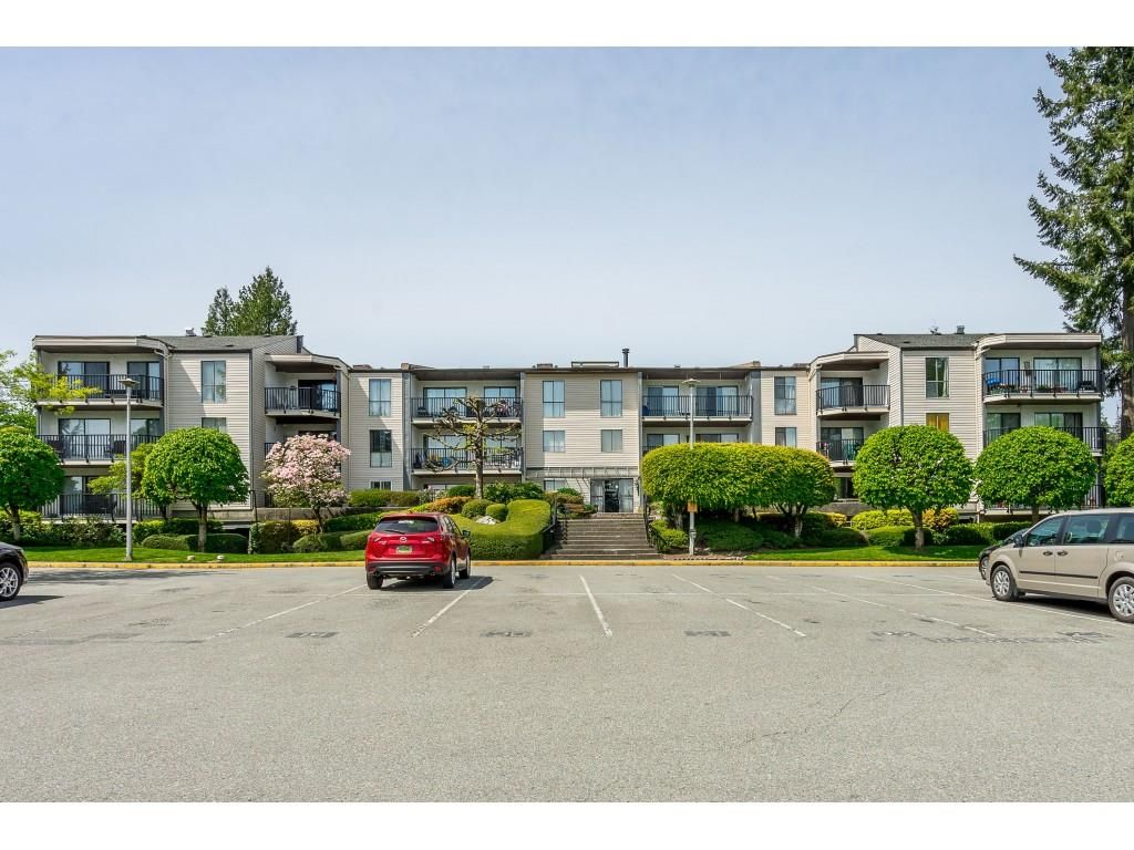 """Main Photo: 213 9952 149 Street in Surrey: Guildford Condo for sale in """"Tall Timbers"""" (North Surrey)  : MLS®# R2366920"""