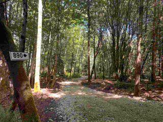 Photo 4: 890 EAGLES REST Lane: Galiano Island Land for sale (Islands-Van. & Gulf)  : MLS®# R2589986