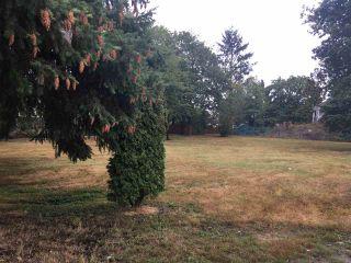 """Photo 2: 20565 BATTLE Avenue in Maple Ridge: Southwest Maple Ridge Land for sale in """"Upper Hammond"""" : MLS®# R2304234"""