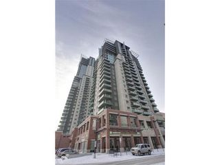 Photo 15: 310 1 Street SE in Calgary: Single Level Apartment for sale : MLS®# C3548056