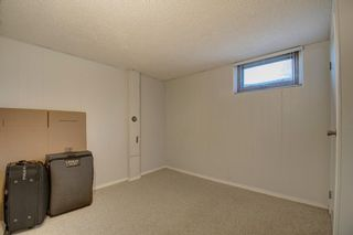 Photo 23: 503 35 Street NW in Calgary: Parkdale Detached for sale : MLS®# A1115340